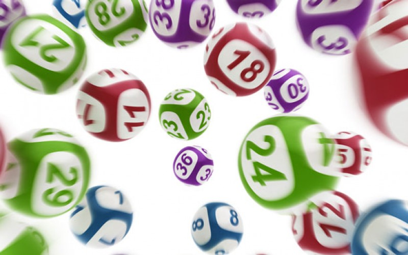 Things you didn't Know about BINGO!